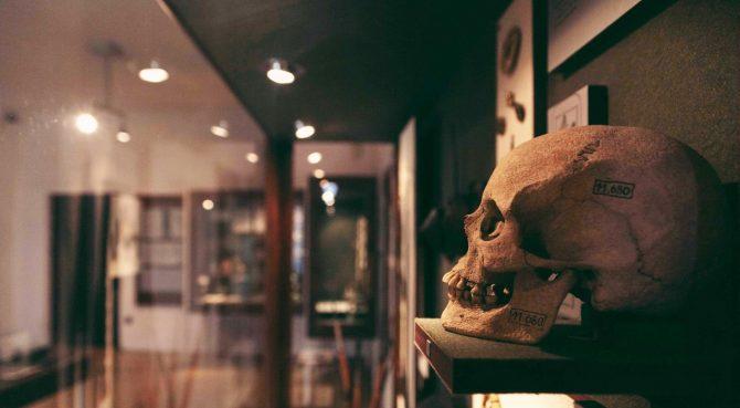 Csontvázak a szekrényből