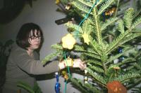 A Soproni Múzeum karácsonyfája