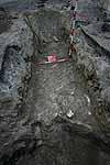 Fő téri ásatás - 2010