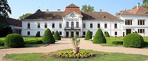 Rendhagyó tárlatvezetés a Széchenyi kastélyban