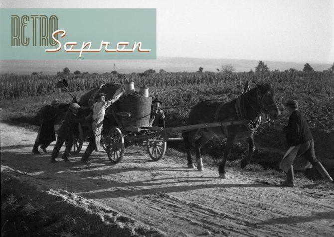RETRO-Sopron a Szüreten