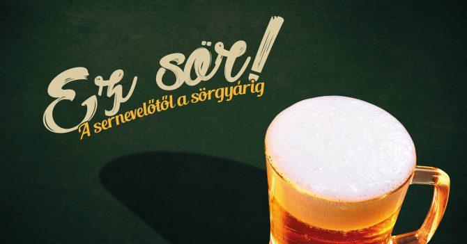 A sernevelőtől a sörgyárig